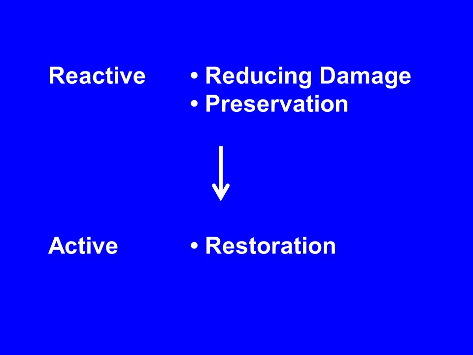 Reactive Reducing Damage Preservation Active Restoration