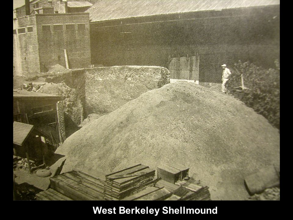 West Berkeley Shellmound
