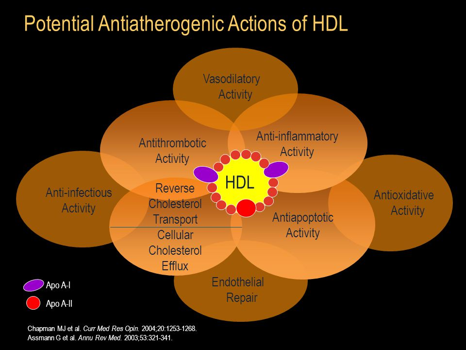 Antioxidative Activity Antithrombotic Activity Potential Antiatherogenic Actions of HDL Anti-infectious Activity Endothelial Repair Chapman MJ et al.