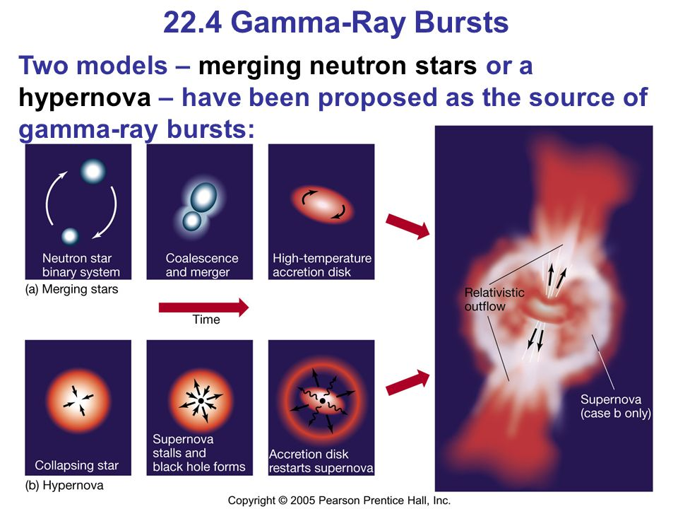 22.4 Gamma-Ray Bursts Two models – merging neutron stars or a hypernova – have been proposed as the source of gamma-ray bursts: