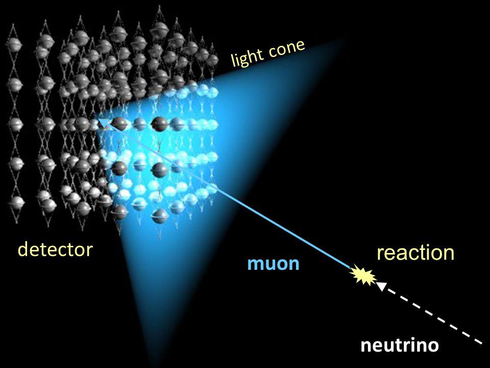 reaction detector neutrino light cone muon