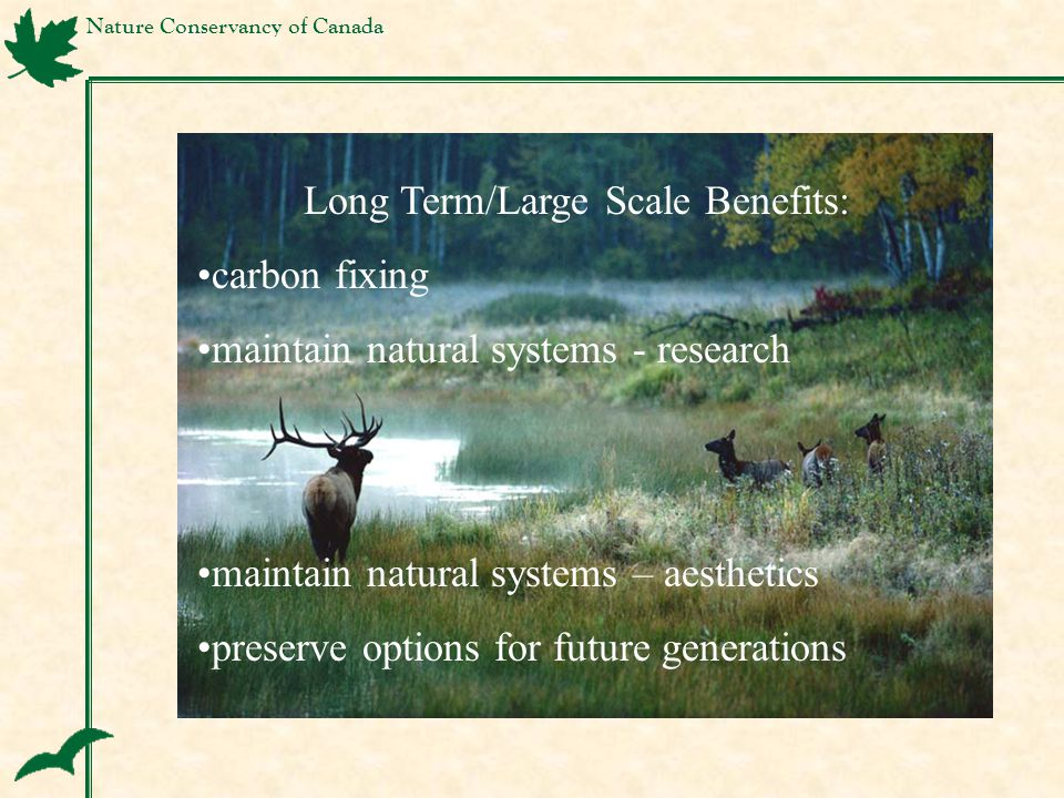 Nature Conservancy of Canada Long Term/Large Scale Benefits: carbon fixing maintain natural systems - research maintain natural systems – aesthetics p