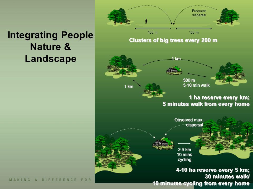 Integrating People Nature & Landscape Clusters of big trees every 200 m Frequent dispersal 1 ha reserve every km; 5 minutes walk from every home 4-10 ha reserve every 5 km; 30 minutes walk/ 10 minutes cycling from every home 100 m 2.5 km 10 mins cycling Observed max.