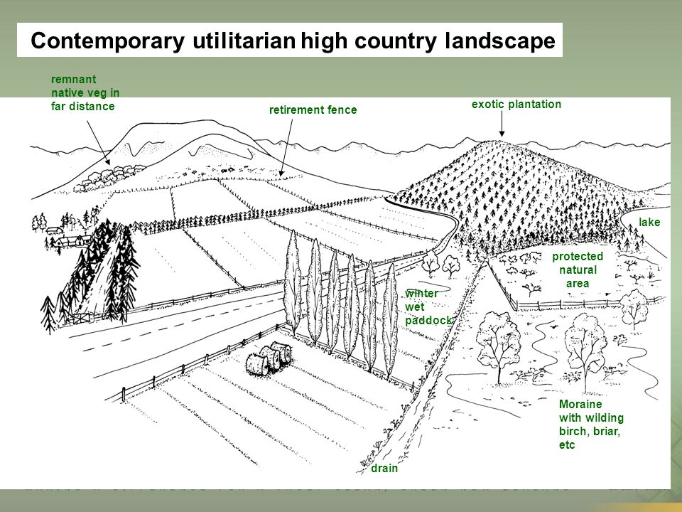 retirement fence exotic plantation drain winter wet paddock Moraine with wilding birch, briar, etc lake protected natural area Contemporary utilitaria