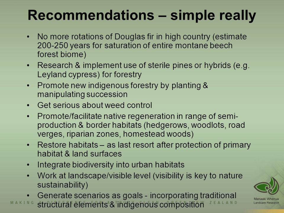 Recommendations – simple really No more rotations of Douglas fir in high country (estimate 200-250 years for saturation of entire montane beech forest biome) Research & implement use of sterile pines or hybrids (e.g.
