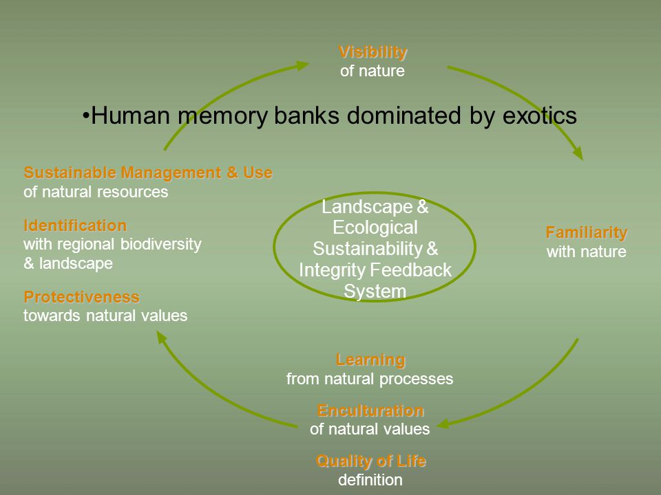 Sustainable Management & Use Sustainable Management & Use of natural resources Identification Identification with regional biodiversity & landscape Protectiveness Protectiveness towards natural values Visibility Visibility of nature Learning Learning from natural processes Enculturation Enculturation of natural values Quality of Life Quality of Life definition Familiarity Familiarity with nature Landscape & Ecological Sustainability & Integrity Feedback System Human memory banks dominated by exotics
