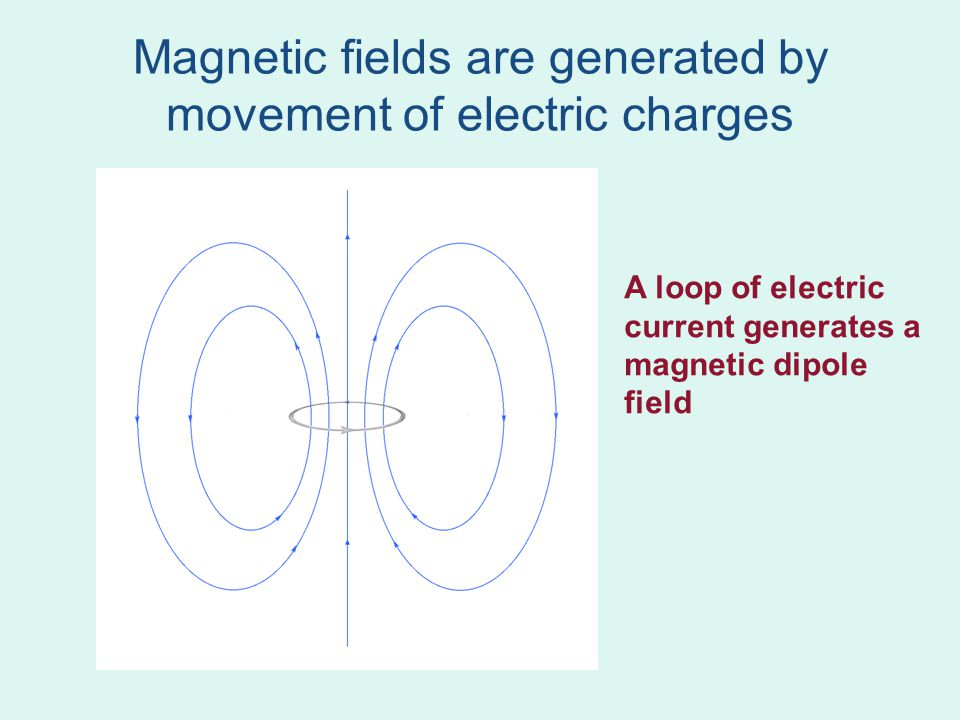Compass needles A magnetic compass needle has a magnetic moment Needle is oriented in the Earth's magnetic field.