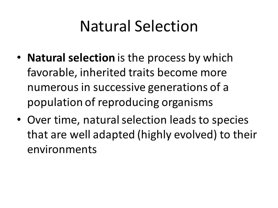 Natural Selection Natural selection is the process by which favorable, inherited traits become more numerous in successive generations of a population