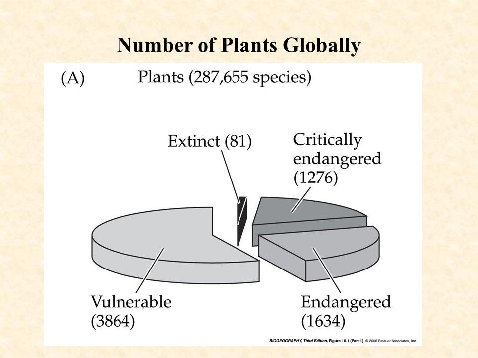 Pattern of CO 2 last 160,000 yr