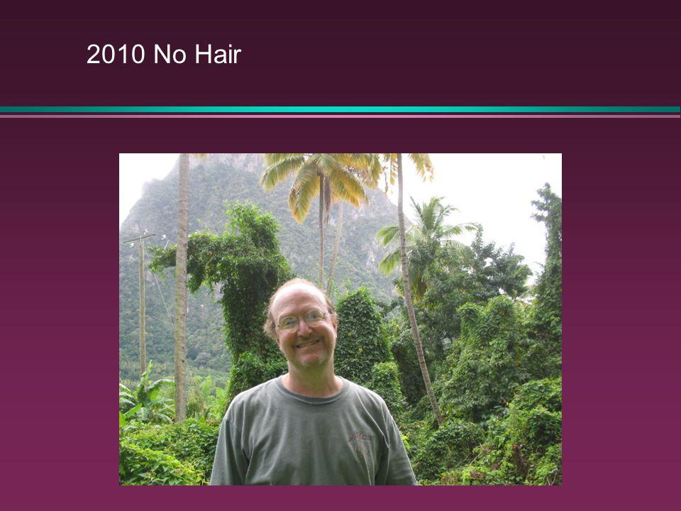 2010 No Hair