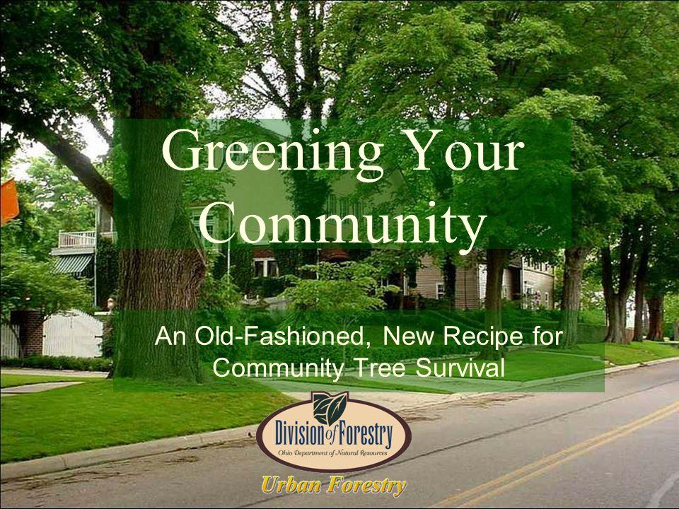 Ohio DNR Urban Forestry Assistance Program Since 1979