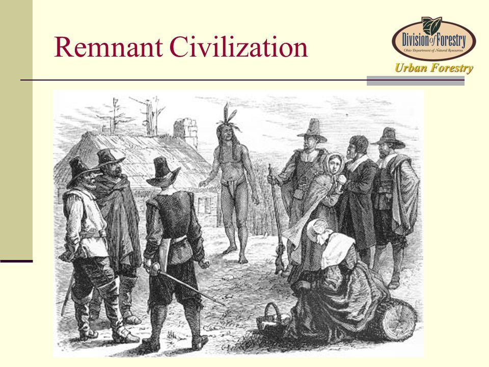Remnant Civilization