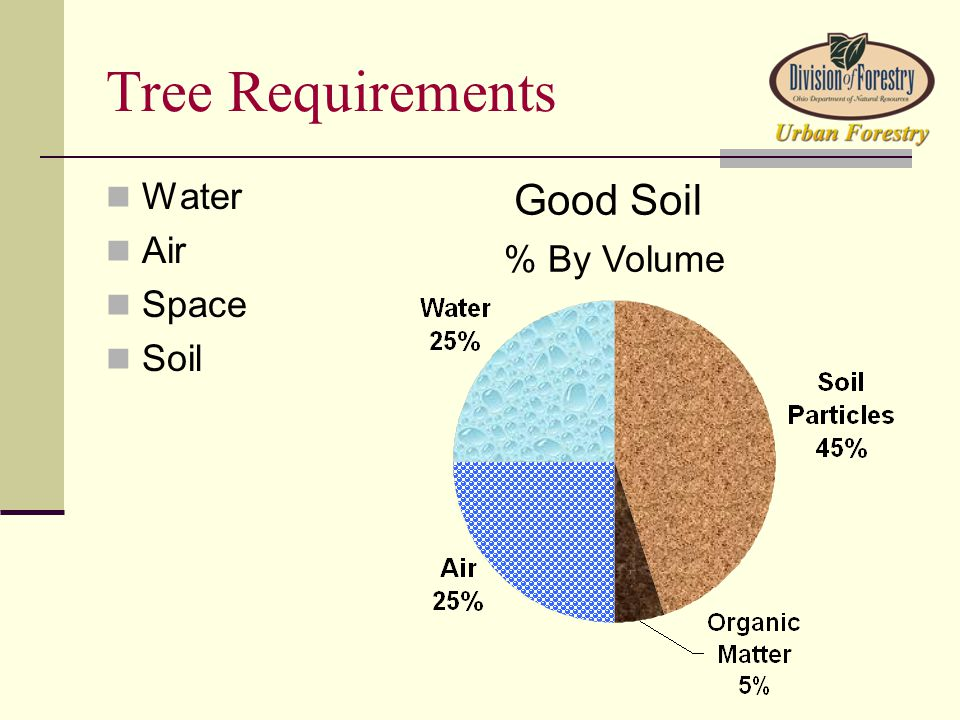 Tree Requirements Water Air Space Soil Good Soil % By Volume