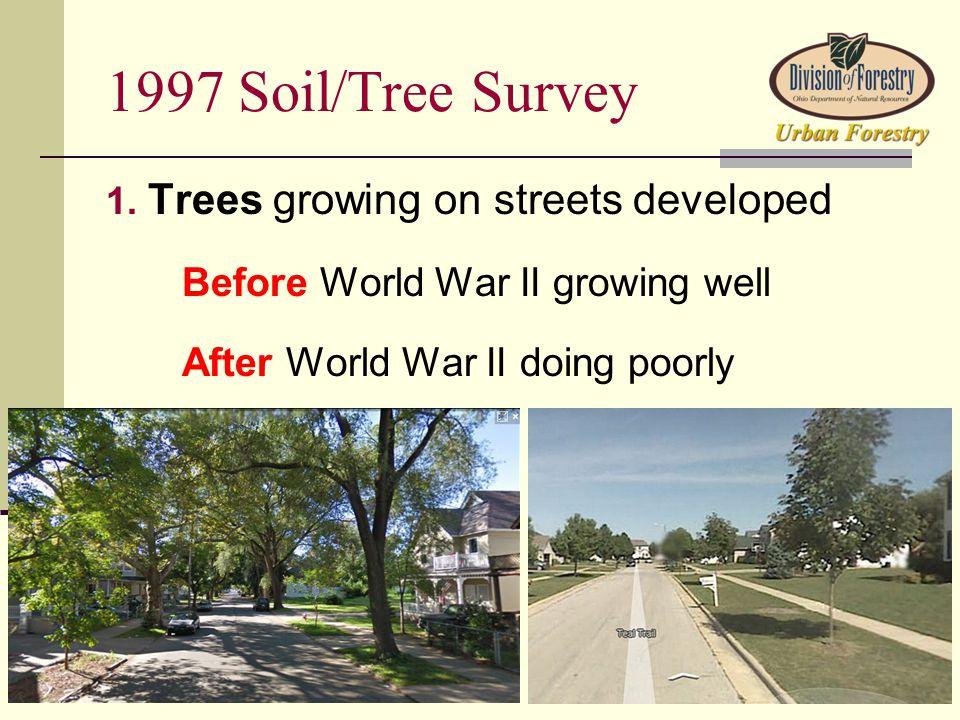 1997 Soil/Tree Survey 1.