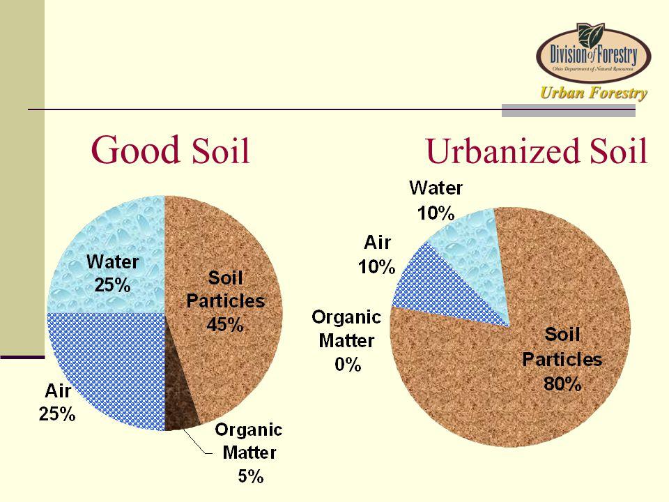 Good SoilUrbanized Soil