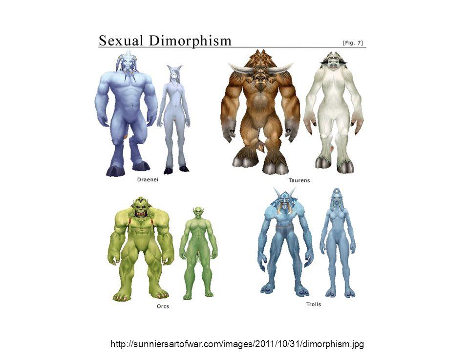 http://sunniersartofwar.com/images/2011/10/31/dimorphism.jpg