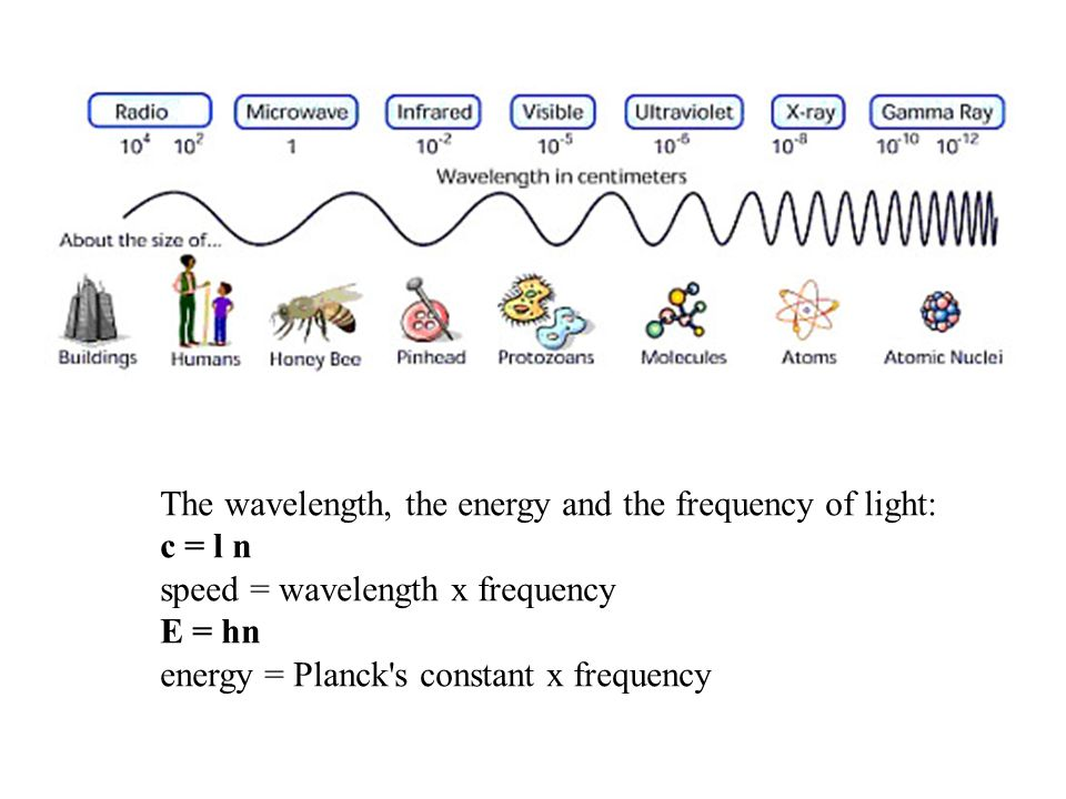 The wavelength, the energy and the frequency of light: c = l n speed = wavelength x frequency E = hn energy = Planck s constant x frequency