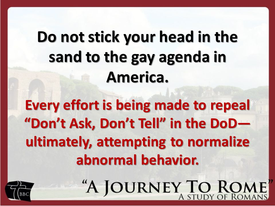 "Do not stick your head in the sand to the gay agenda in America. Every effort is being made to repeal ""Don't Ask, Don't Tell"" in the DoD— ultimately,"