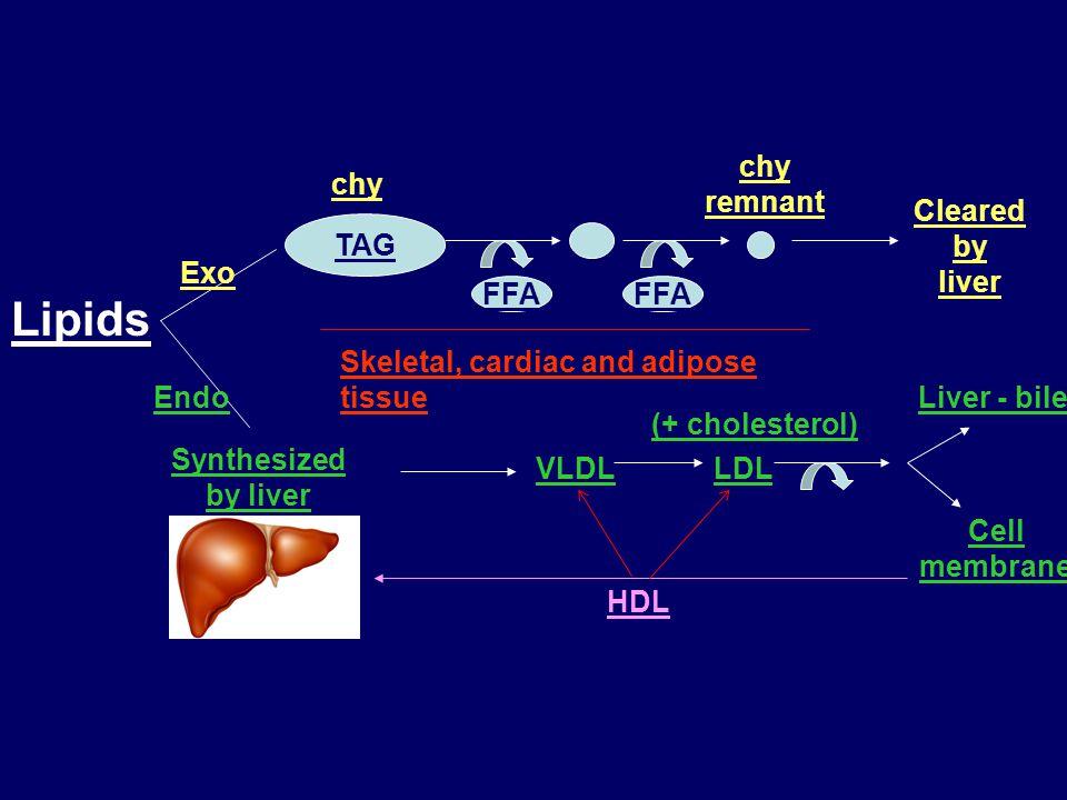 Dyslipidaemias Hypercholesterolaemia Hypertriglyceridaemia Mixed dyslipidaemia