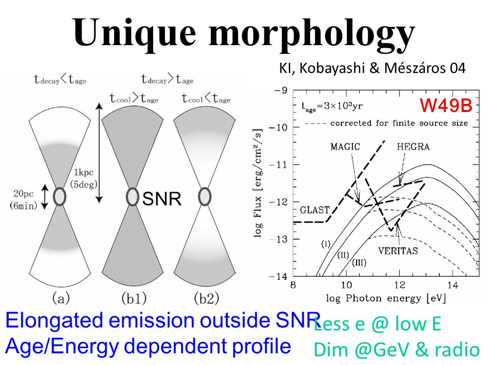 Unique morphology Elongated emission outside SNR Age/Energy dependent profile Less e @ low E Dim @GeV & radio KI, Kobayashi & Mészáros 04 SNR W49B
