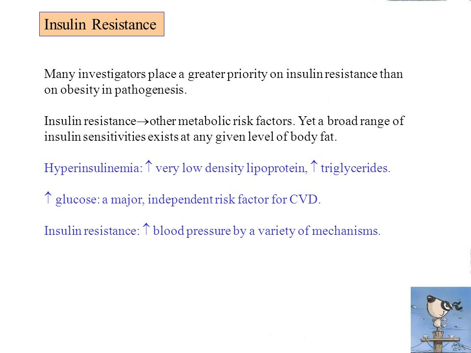 Insulin Resistance Many investigators place a greater priority on insulin resistance than on obesity in pathogenesis.