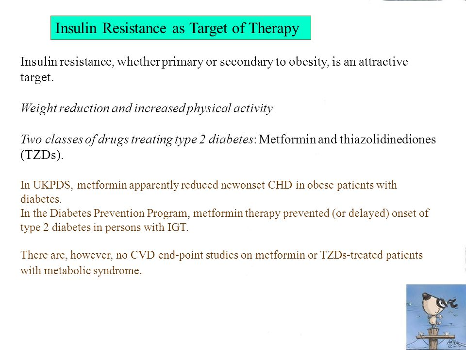 Insulin Resistance as Target of Therapy Insulin resistance, whether primary or secondary to obesity, is an attractive target.