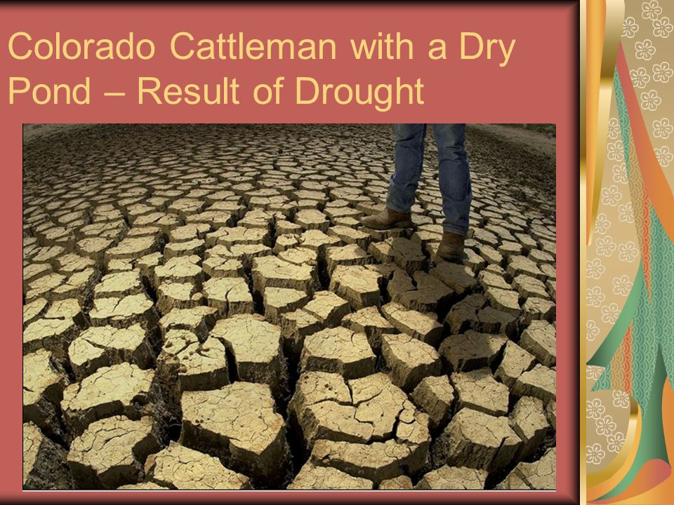 Colorado Cattleman with a Dry Pond – Result of Drought