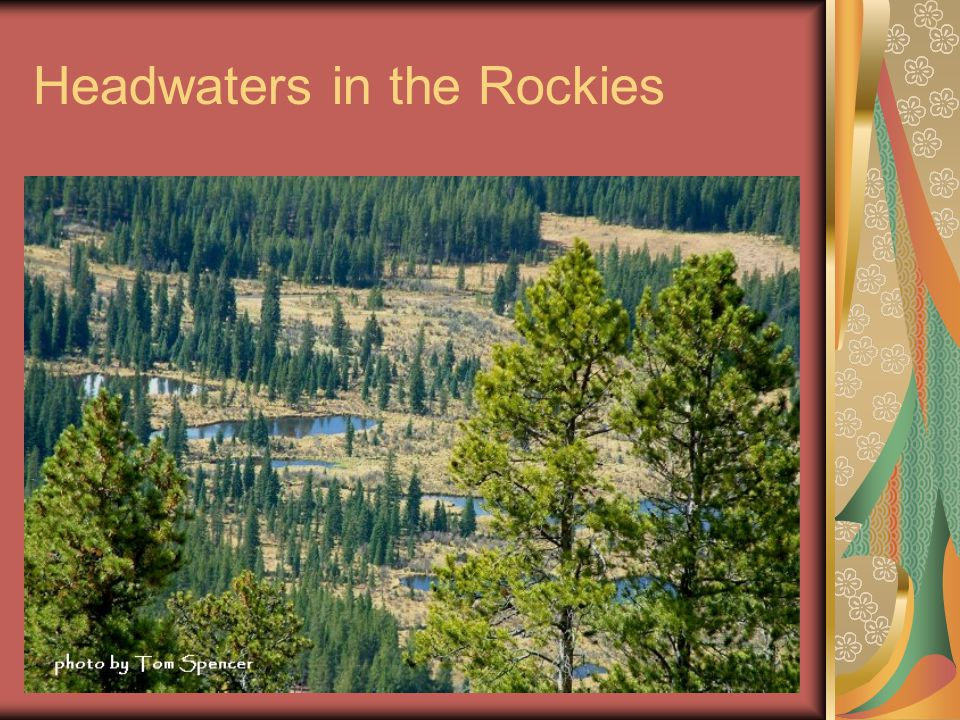 Headwaters in the Rockies