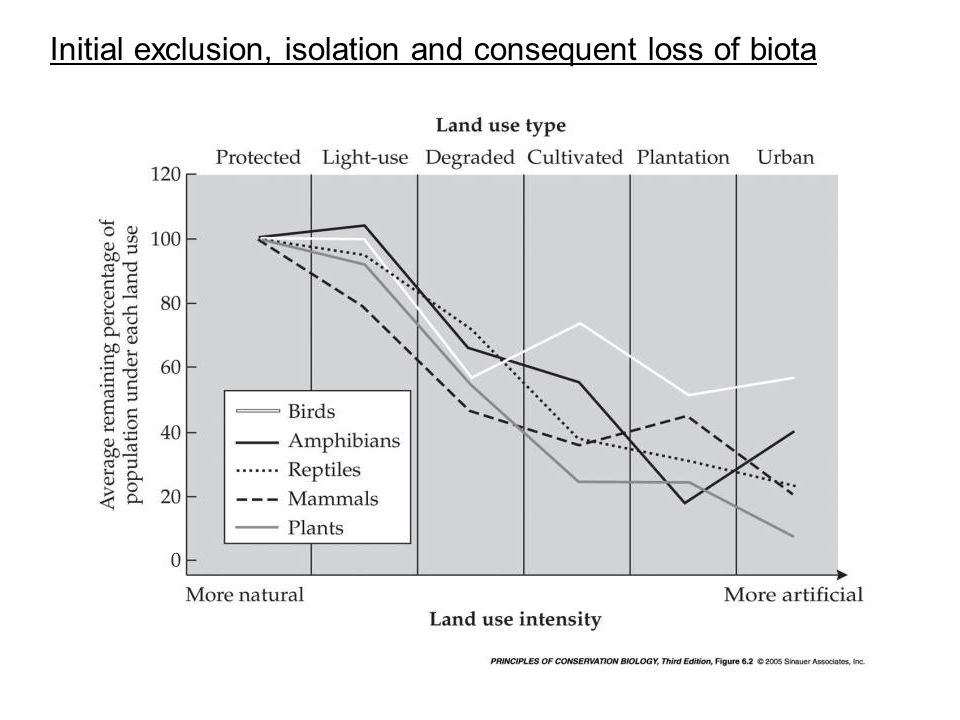 Initial exclusion, isolation and consequent loss of biota