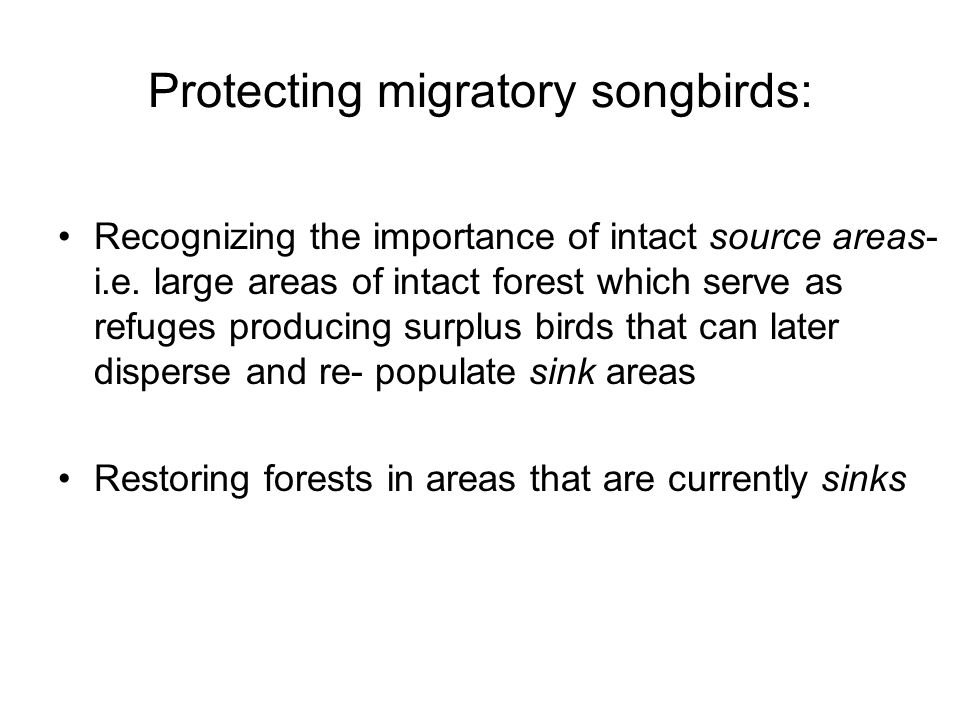 Protecting migratory songbirds: Recognizing the importance of intact source areas- i.e.