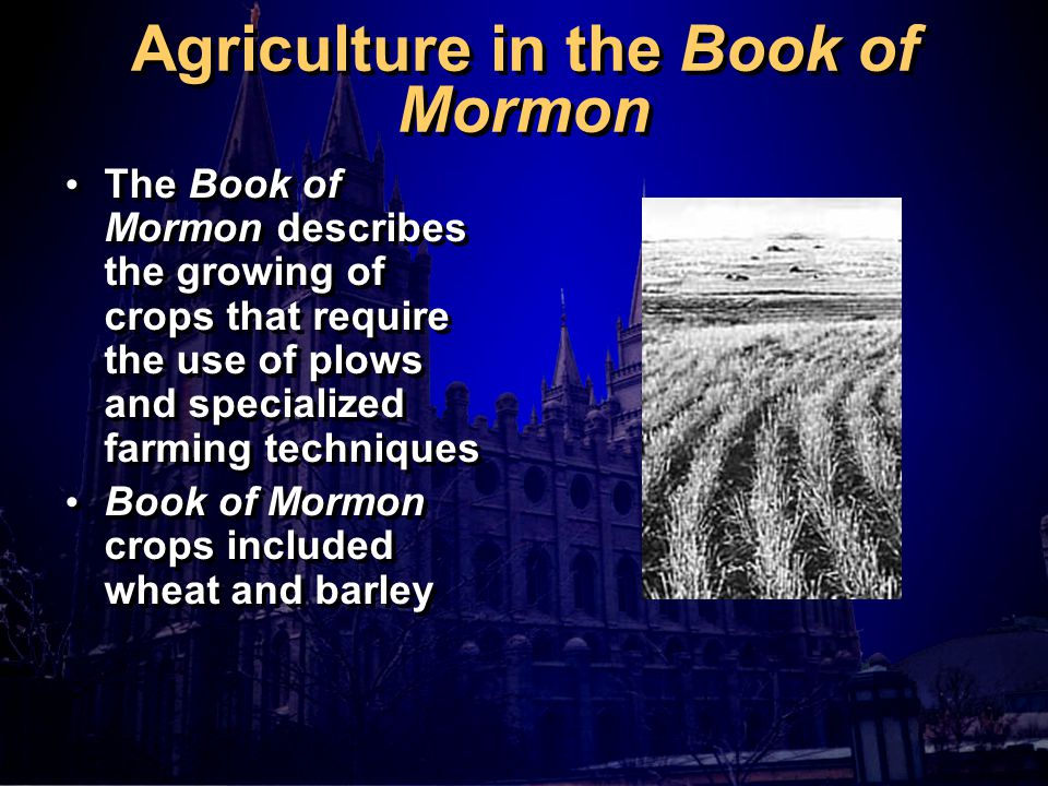 Agriculture in the Book of Mormon The Book of Mormon describes the growing of crops that require the use of plows and specialized farming techniques Book of Mormon crops included wheat and barley The Book of Mormon describes the growing of crops that require the use of plows and specialized farming techniques Book of Mormon crops included wheat and barley