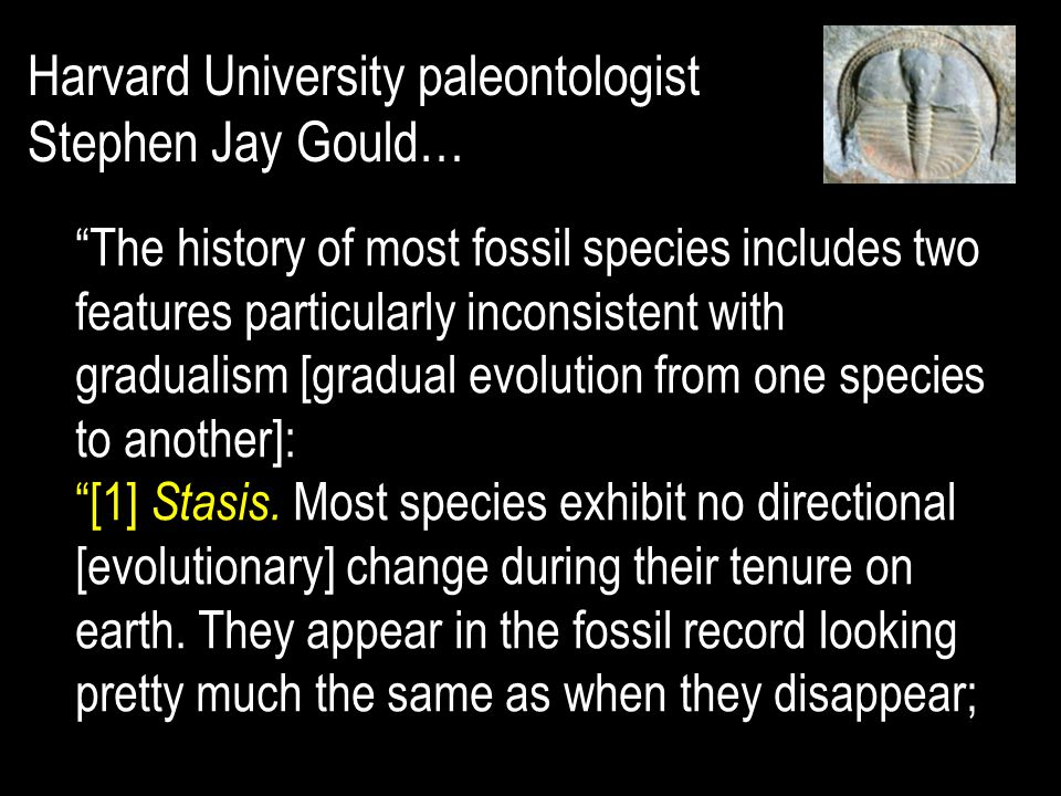 The history of most fossil species includes two features particularly inconsistent with gradualism [gradual evolution from one species to another]: [1] Stasis.