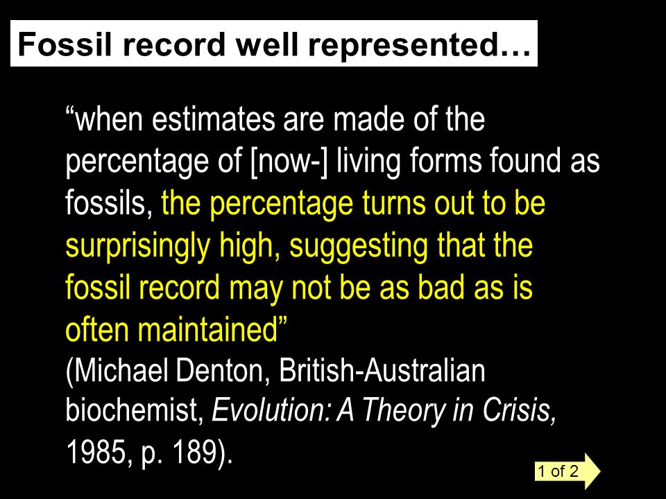 Fossil record well represented… when estimates are made of the percentage of [now-] living forms found as fossils, the percentage turns out to be surprisingly high, suggesting that the fossil record may not be as bad as is often maintained (Michael Denton, British-Australian biochemist, Evolution: A Theory in Crisis, 1985, p.