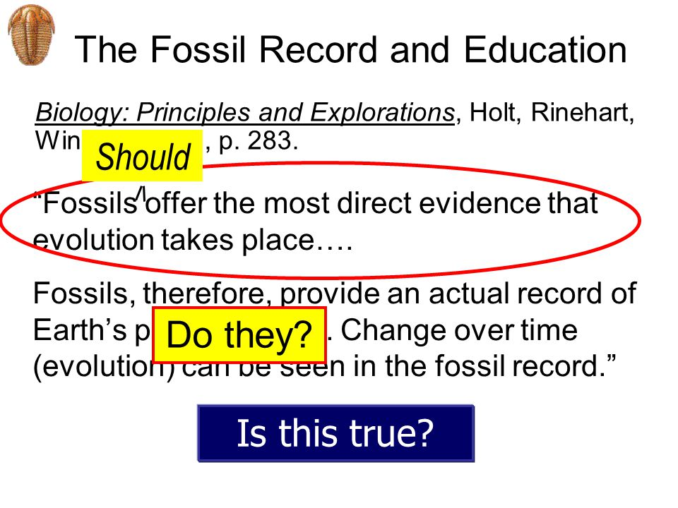 The Fossil Record and Education Fossils offer the most direct evidence that evolution takes place….