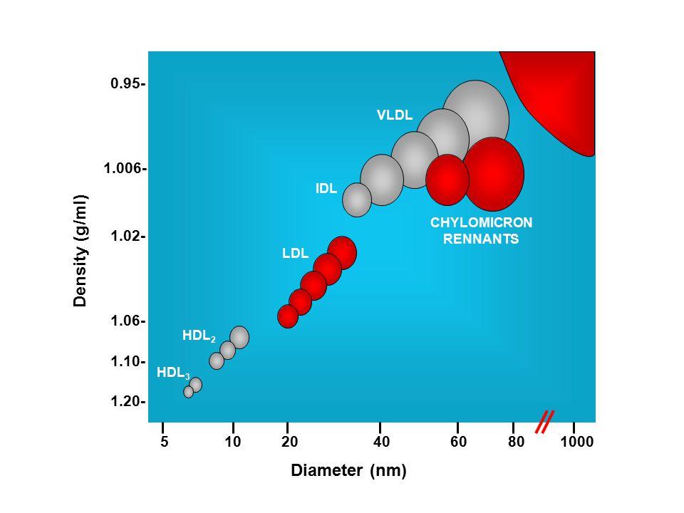 CHYLOMICRON RENNANTS VLDL IDL LDL HDL 2 HDL 3 0.95- 1.006- 1.02- 1.06- 1.10- 1.20- Density (g/ml) Diameter (nm) 510204060801000