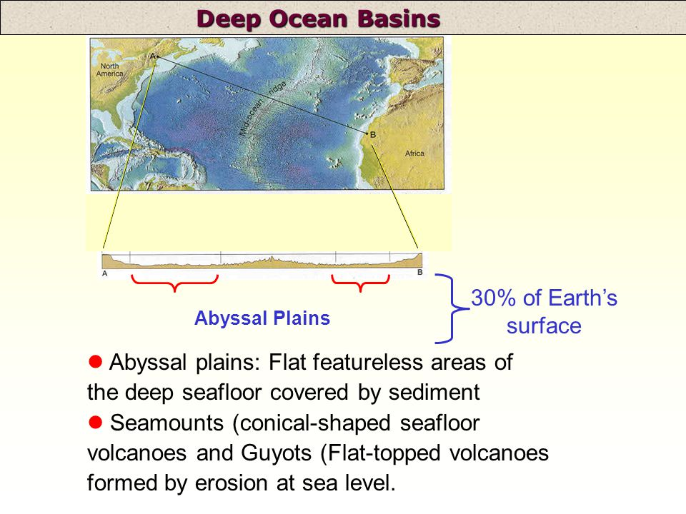 Deep Ocean Basins l Abyssal plains: Flat featureless areas of the deep seafloor covered by sediment Seamounts (conical-shaped seafloor volcanoes and Guyots (Flat-topped volcanoes formed by erosion at sea level.