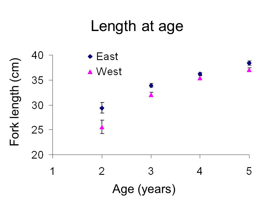 Length at age Fork length (cm) Age (years)