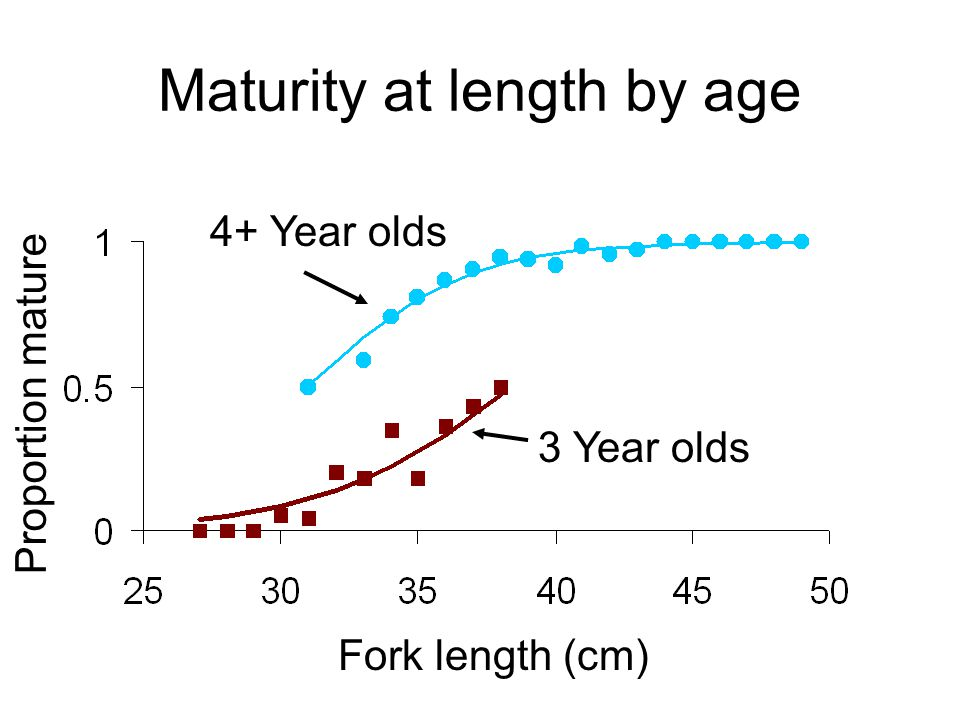 Maturity at length by age Fork length (cm) Proportion mature 3 Year olds 4+ Year olds