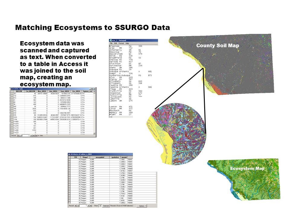 Matching Ecosystems to SSURGO Data Ecosystem data was scanned and captured as text.