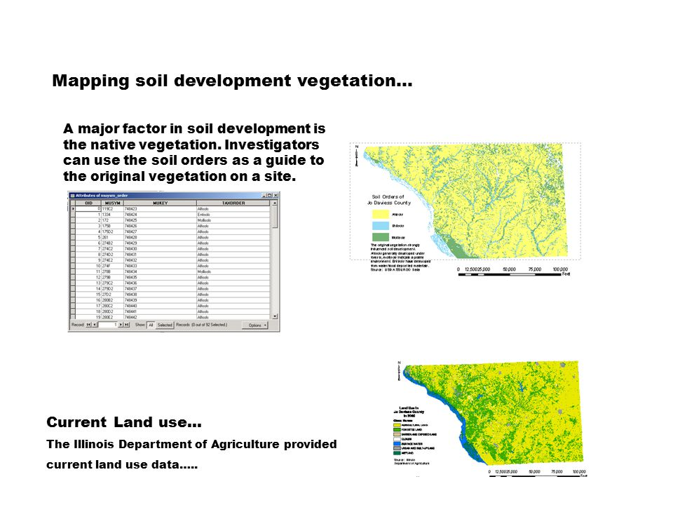 Mapping soil development vegetation… A major factor in soil development is the native vegetation.