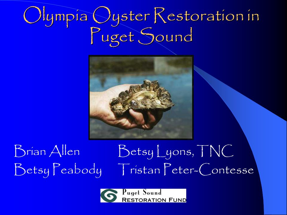 Olympia Oyster Restoration in Puget Sound Brian AllenBetsy Lyons, TNC Betsy PeabodyTristan Peter-Contesse