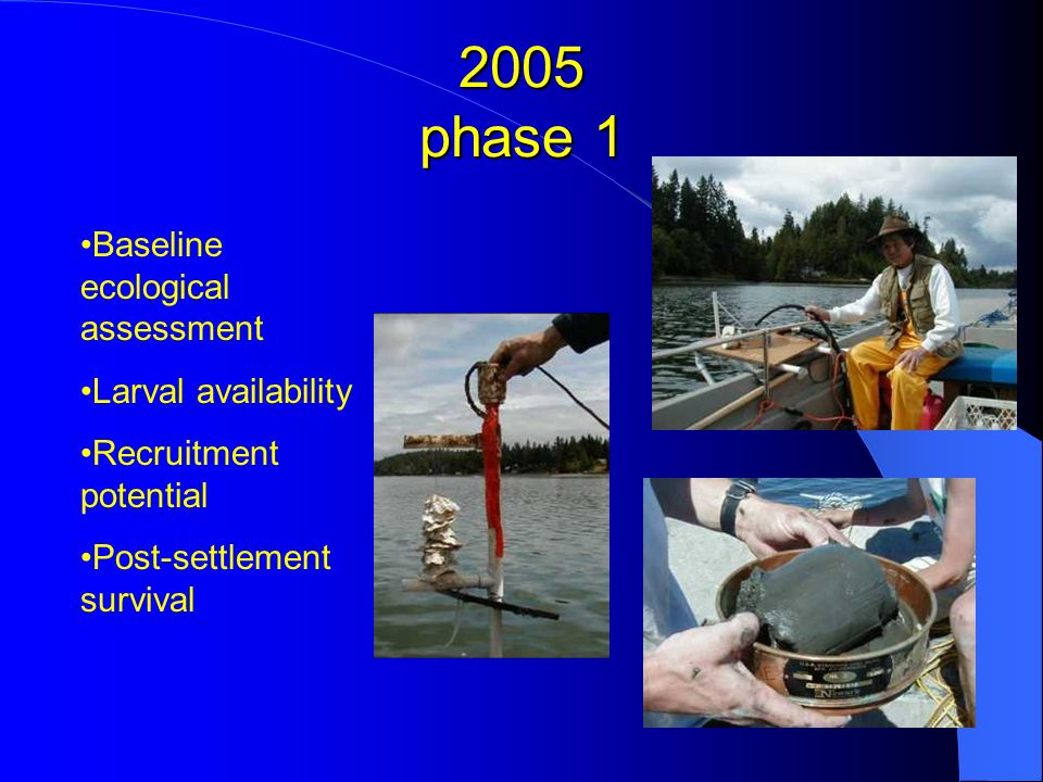2005 phase 1 Baseline ecological assessment Larval availability Recruitment potential Post-settlement survival