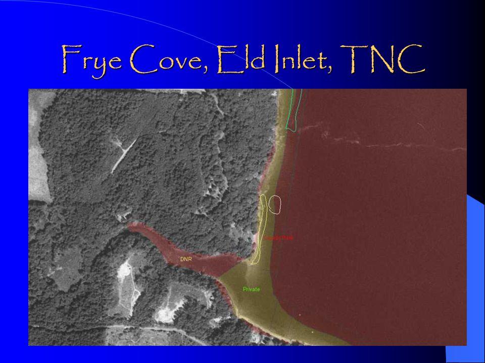 Frye Cove, Eld Inlet, TNC
