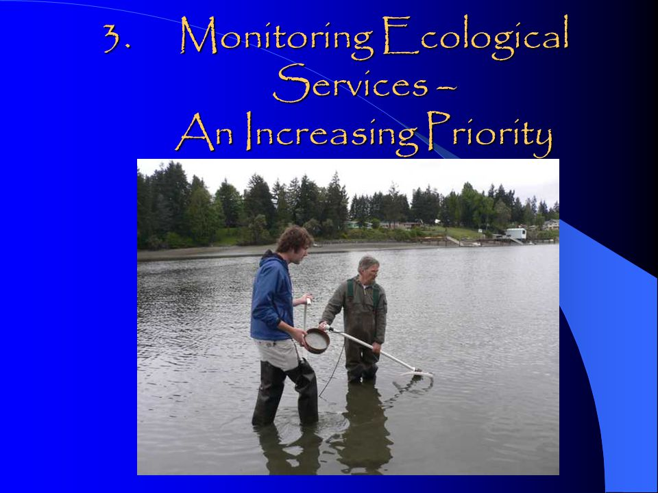 3. Monitoring Ecological Services – An Increasing Priority