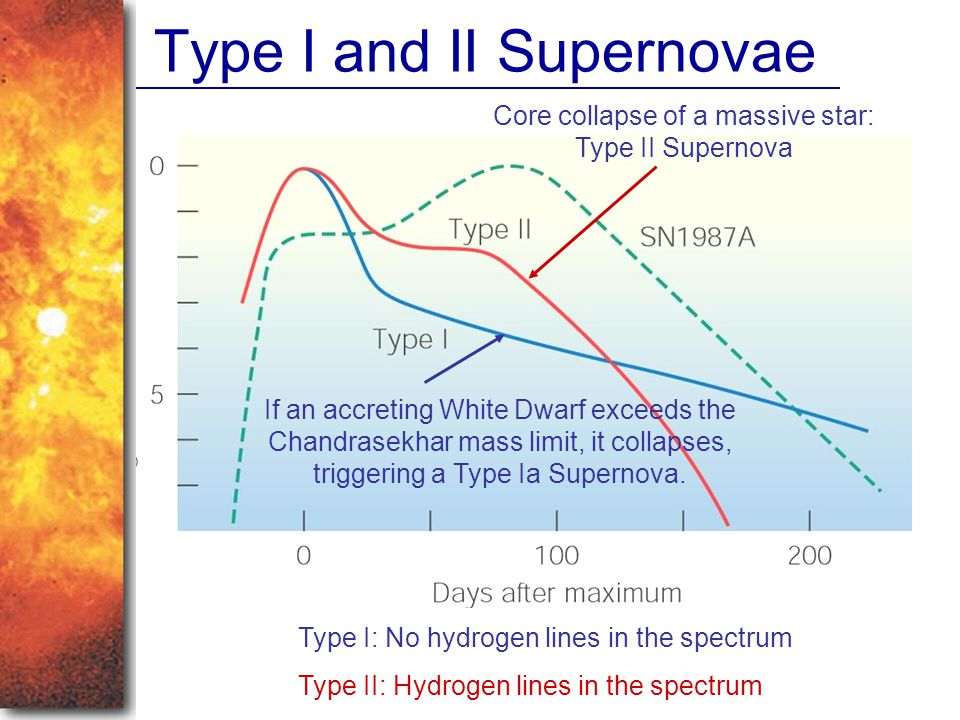 Type I and II Supernovae Core collapse of a massive star: Type II Supernova If an accreting White Dwarf exceeds the Chandrasekhar mass limit, it collapses, triggering a Type Ia Supernova.