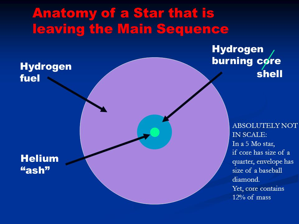 """Hydrogen fuel Hydrogen burning core Helium """"ash"""" Anatomy of a Star that is leaving the Main Sequence shell ABSOLUTELY NOT IN SCALE: In a 5 Mo star, if"""