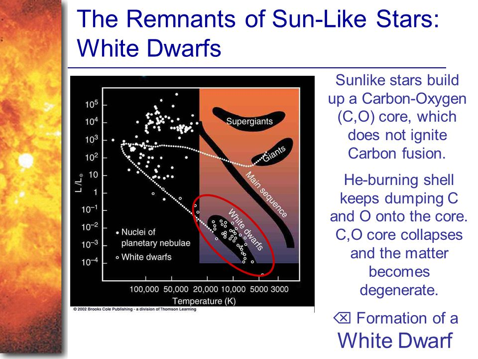 The Remnants of Sun-Like Stars: White Dwarfs Sunlike stars build up a Carbon-Oxygen (C,O) core, which does not ignite Carbon fusion. He-burning shell