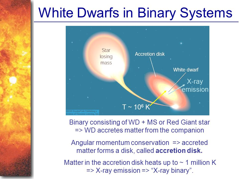 White Dwarfs in Binary Systems Binary consisting of WD + MS or Red Giant star => WD accretes matter from the companion Angular momentum conservation =