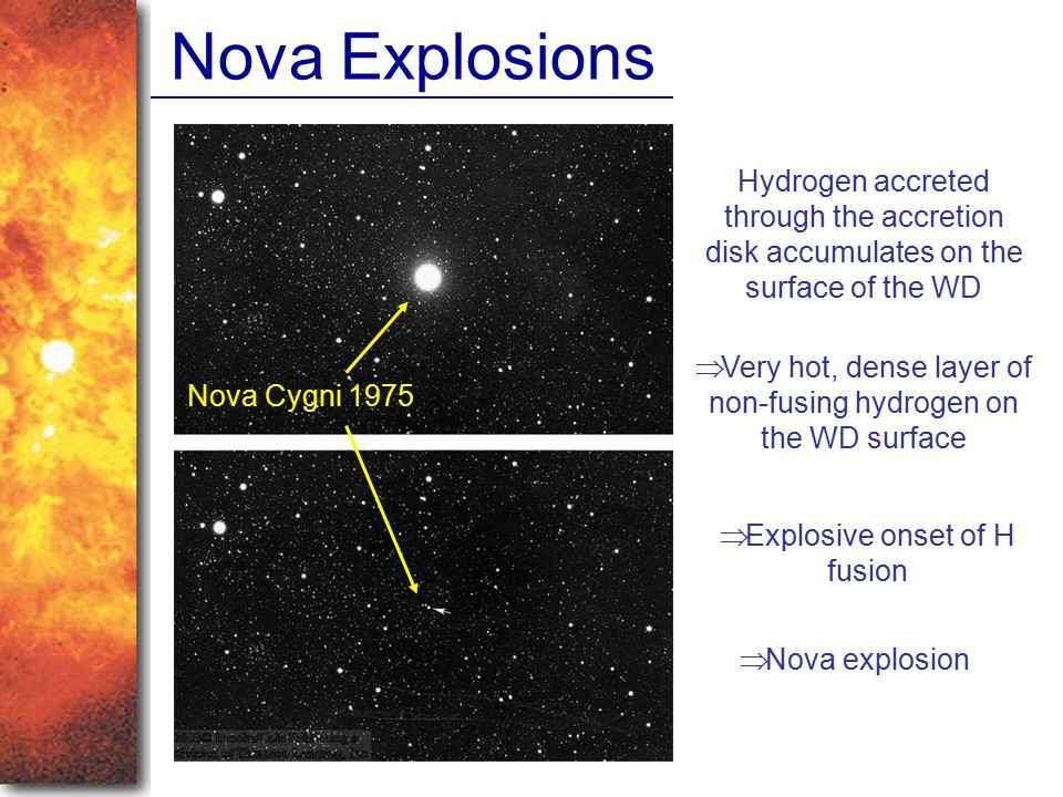 Nova Explosions Nova Cygni 1975 Hydrogen accreted through the accretion disk accumulates on the surface of the WD  Very hot, dense layer of non-fusin