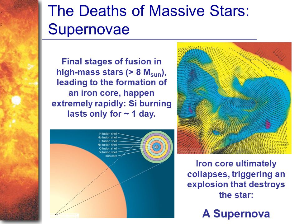 The Deaths of Massive Stars: Supernovae Final stages of fusion in high-mass stars (> 8 M sun ), leading to the formation of an iron core, happen extre
